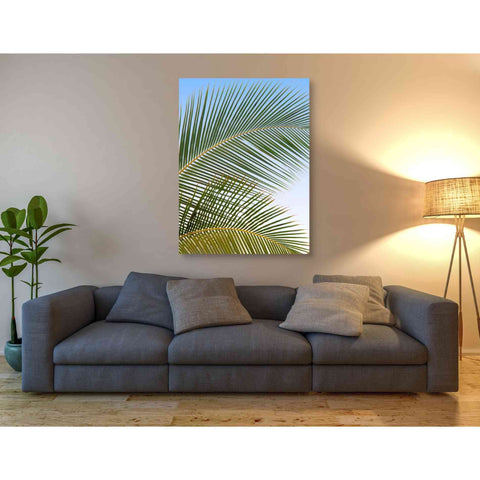 'Tropical II' by Dennis Frates, Canvas Wall Art,12 x 18