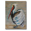 """Pelican"" by Molly Susan Strong Giclee Canvas Wall Art"