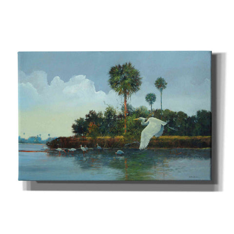 'Flying Low' by Roger Bansemer, Canvas Wall Art,Size A Landscape