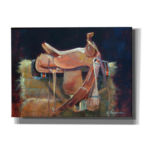 'Saddle' by Roger Bansemer, Canvas Wall Art,Size B Landscape