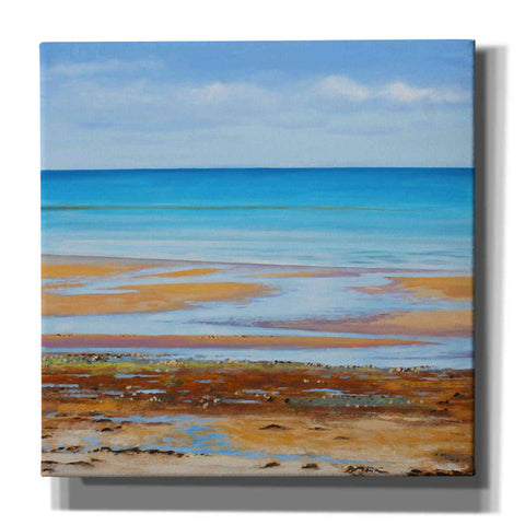 'Into The Blue' by Sandra Francis, Canvas Wall Art