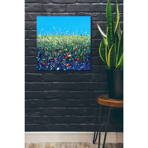 Image of 'Flowers I' by Stuart Roy, Canvas Wall Art,26 x 26
