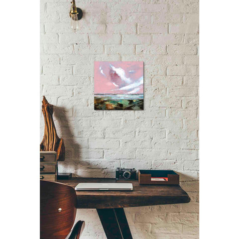 Image of 'Pink Skies I' by Stuart Roy, Canvas Wall Art,12 x 12