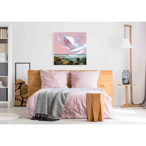 Image of 'Pink Skies I' by Stuart Roy, Canvas Wall Art,37 x 37
