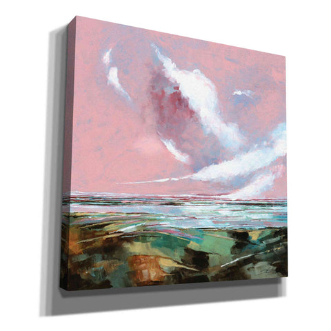 'Pink Skies I' by Stuart Roy, Canvas Wall Art,Size 1 Square