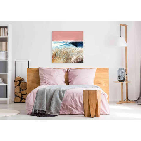 Image of 'Pink Skies II' by Stuart Roy, Canvas Wall Art,37 x 37
