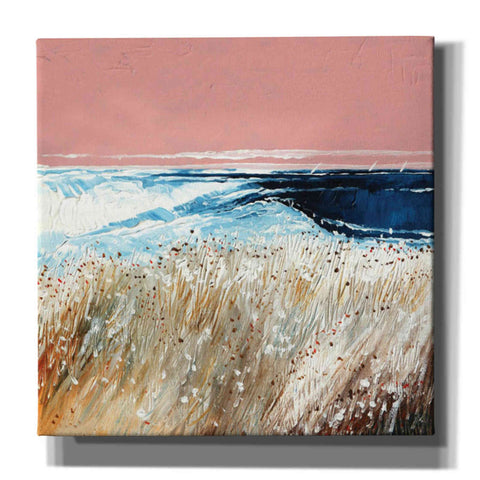 'Pink Skies II' by Stuart Roy, Canvas Wall Art,Size 1 Square