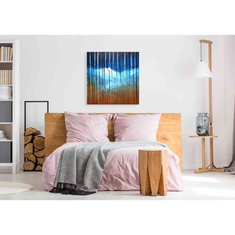 'Abstract' by Stuart Roy, Canvas Wall Art,37 x 37