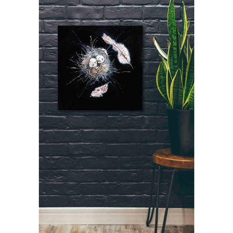 Image of 'Birds Nest I' by Stuart Roy, Canvas Wall Art,26 x 26