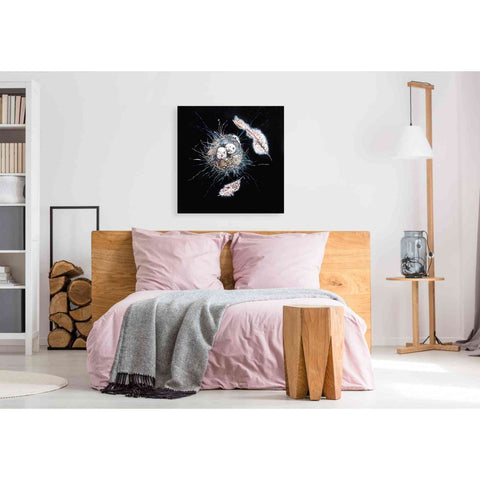 Image of 'Birds Nest I' by Stuart Roy, Canvas Wall Art,37 x 37