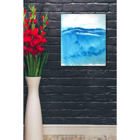 'Seascape VI' by Stuart Roy, Canvas Wall Art,20 x 24