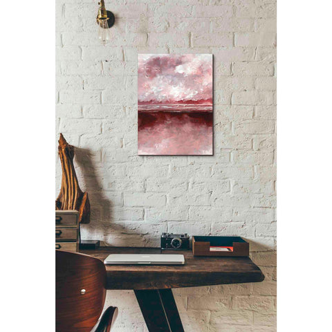 'Pink Skies III' by Stuart Roy, Canvas Wall Art,12 x 16