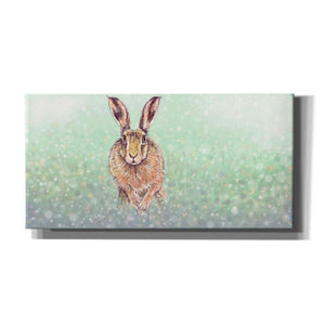 'Hare I' by Stuart Roy, Canvas Wall Art,Size 2 Landscape
