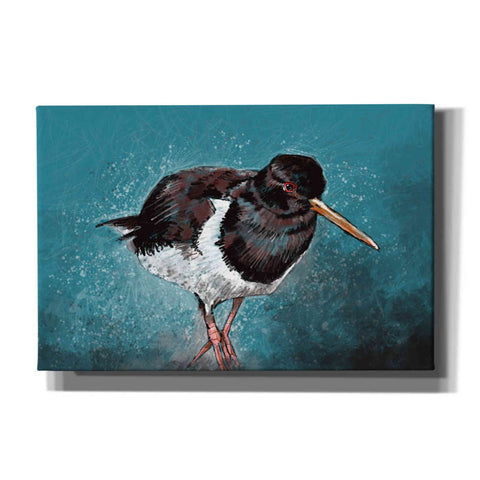 Image of 'Oyster Catcher' by Stuart Roy, Canvas Wall Art,Size A Landscape