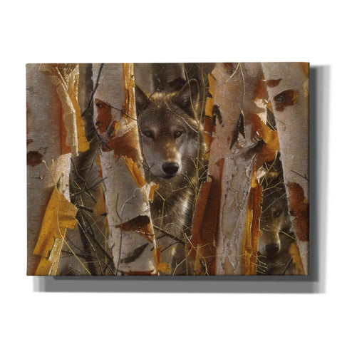 Image of 'The Guardian' by Collin Bogle, Canvas Wall Art,Size C Landscape