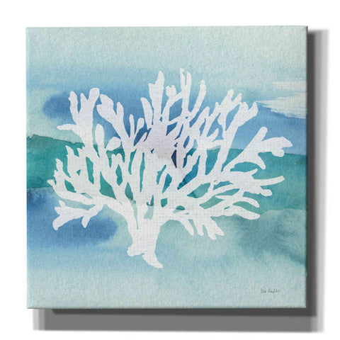 'Sea Life Coral II' by Lisa Audit, Canvas Wall Art