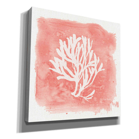 'Water Coral Cove III' by Lisa Audit, Canvas Wall Art