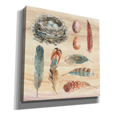 'Spiced Nature X' by Lisa Audit, Canvas Wall Art