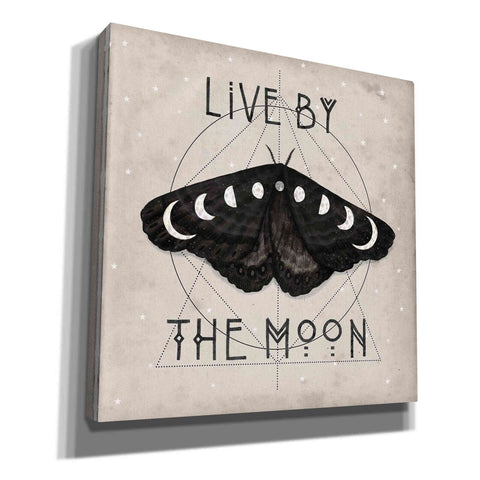 'Live by the Moon I' by Victoria Borges, Canvas Wall Art