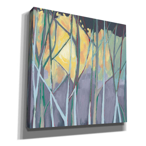 Image of 'Tangled Twilight I' by Grace Popp, Canvas Wall Glass