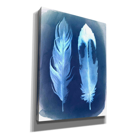 'Feather Negatives II' by Grace Popp, Canvas Wall Glass