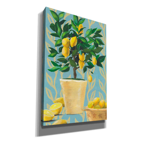 'Opulent Citrus I' by Grace Popp, Canvas Wall Glass