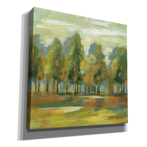 Image of 'Forest I' by Silvia Vassileva, Canvas Wall Art
