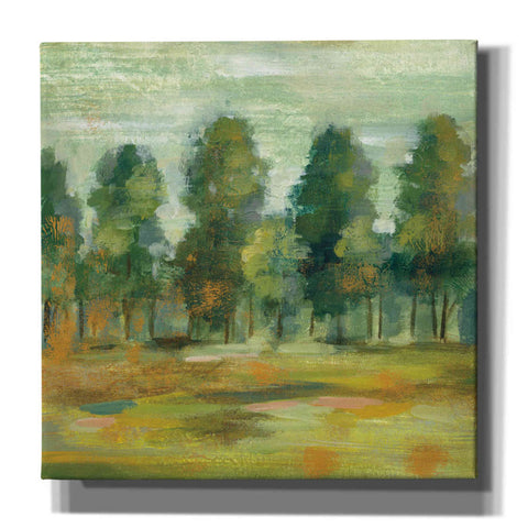 Image of 'Forest II' by Silvia Vassileva, Canvas Wall Art