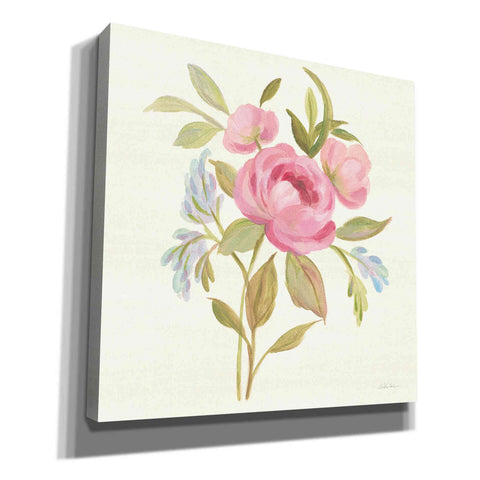 Image of 'Petals and Blossoms IV' by Silvia Vassileva, Canvas Wall Art
