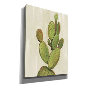 'Front Yard Cactus I' by Silvia Vassileva, Canvas Wall Art