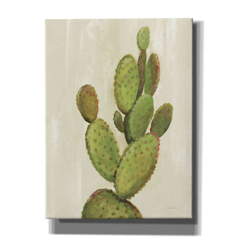 Image of 'Front Yard Cactus I' by Silvia Vassileva, Canvas Wall Art