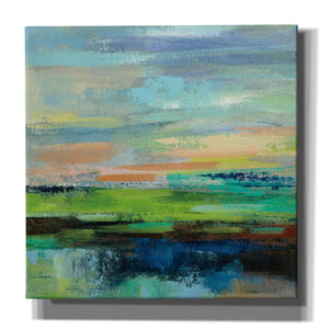'Delmar Sunset II' by Silvia Vassileva, Canvas Wall Art