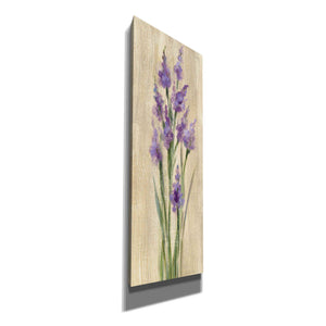 'Farm Flower II' by Silvia Vassileva, Canvas Wall Art