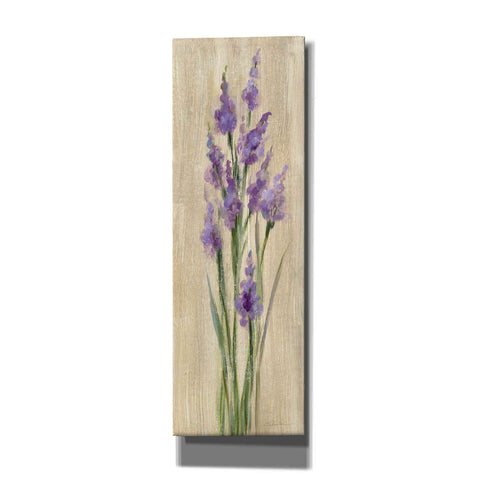 Image of 'Farm Flower II' by Silvia Vassileva, Canvas Wall Art