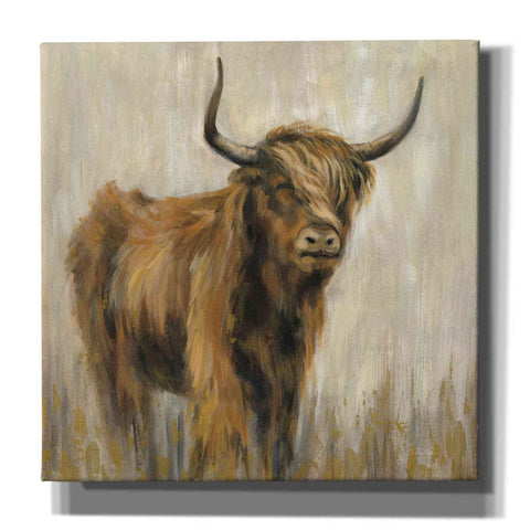 Image of 'Highland Mountain Cow' by Silvia Vassileva, Canvas Wall Art
