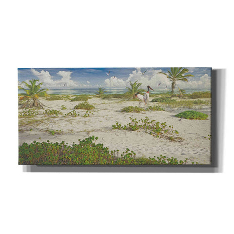 Image of 'Tropical Loners' by Steve Hunziker, Canvas Wall Art