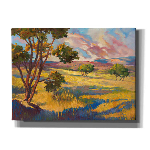 Image of 'Wide horizons 2' by Graham Reynolds, Canvas Wall Art