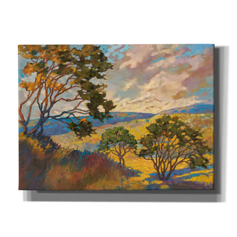 Image of 'Wide horizons 1' by Graham Reynolds, Canvas Wall Art