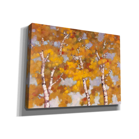 Image of 'Soft Breeze 2' by Graham Reynolds, Canvas Wall Art