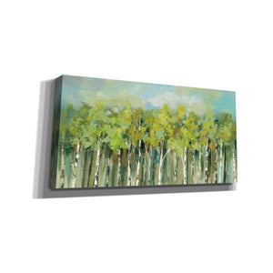 'April Tree Tops' by Silvia Vassileva, Canvas Wall Art