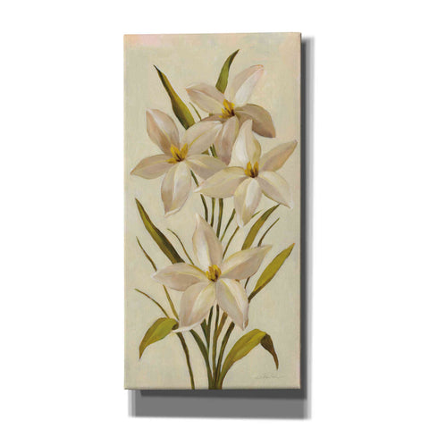 Image of 'Elegant White Florals II' by Silvia Vassileva, Canvas Wall Art