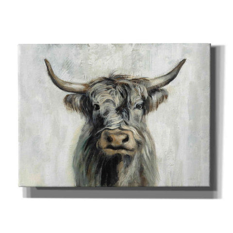 'Highland Cow Horizontal' by Silvia Vassileva, Canvas Wall Art