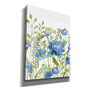 'Botanical Blue VII' by Silvia Vassileva, Canvas Wall Art