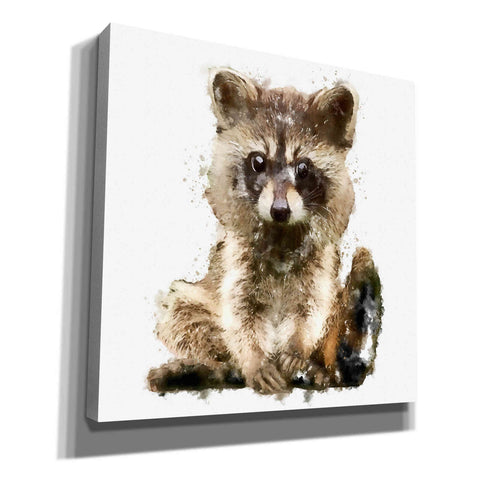 Image of 'Ricky Racoon' by Kim Curinga, Canvas Wall Art