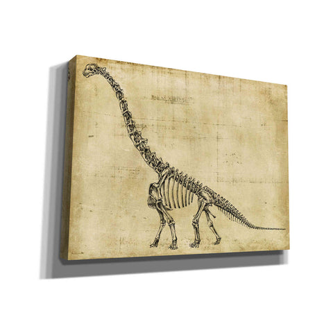 """Brachiosaurus Study"" by Ethan Harper, Canvas Wall Art"