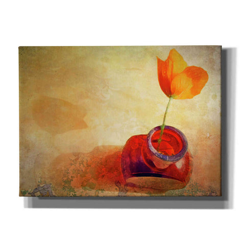 "Image of ""Orange Poppy In Brown Bottle"" by Hal Halli, Canvas Wall Art"