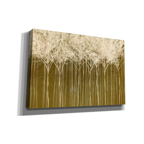 """Golden Light Forest 2"" by Hal Halli, Canvas Wall Art"