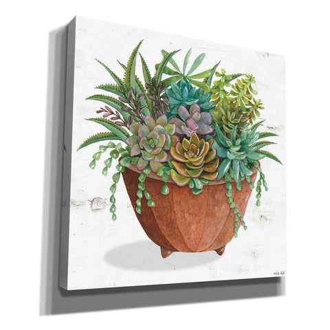 'Terracotta Succulents I' by Cindy Jacobs, Canvas Wall Art