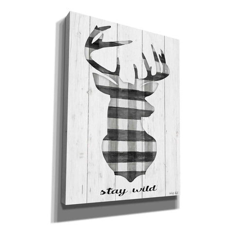 'Stay Wild' by Cindy Jacobs, Canvas Wall Art