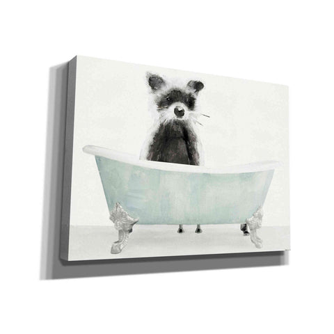 'Vintage Tub with Racoon' by Stellar Design Studio, Canvas Wall Art
